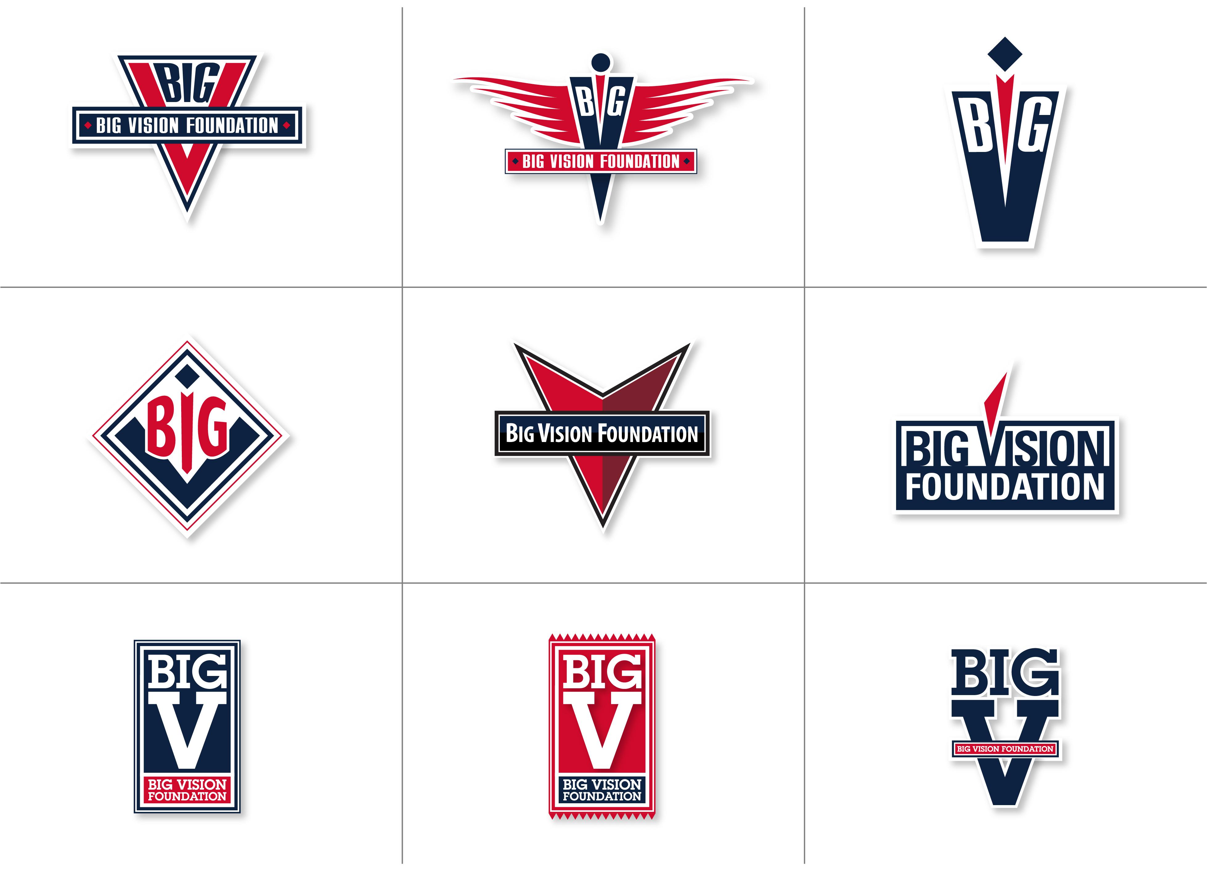 BIG Vision Foundation Logo Development, six variations
