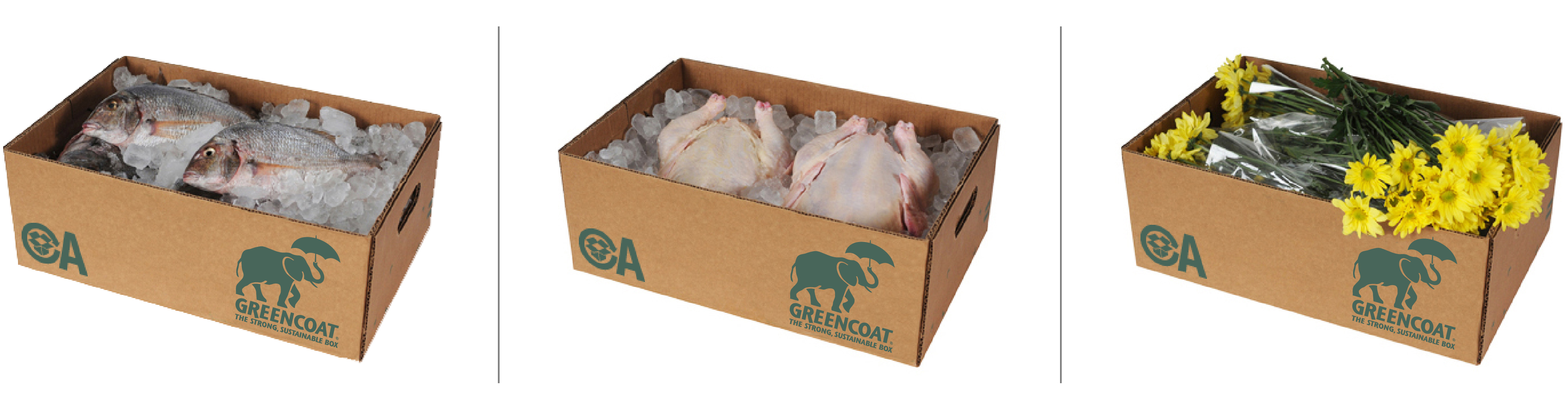 Greencoat Boxes, with fish, poultry and flowers
